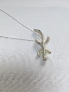 Silver Gecko on Box Chain £50