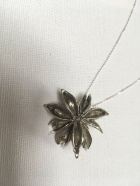 Silver Star Anise & Chain £70