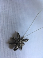 Silver Star Anise Pendant & 18 inch Chain £70